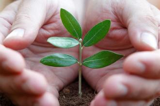 Zertifizierung und Ökologie | FORMBAGS SpA