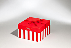 QUICK BOX    FORMBAGS SpA