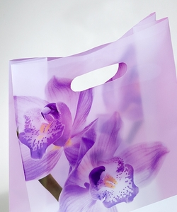 Shopping bag in plastica Foro Lusso | FORMBAGS SpA